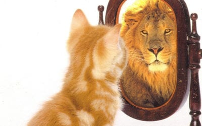 B2B Bosses Need to Look in the Mirror
